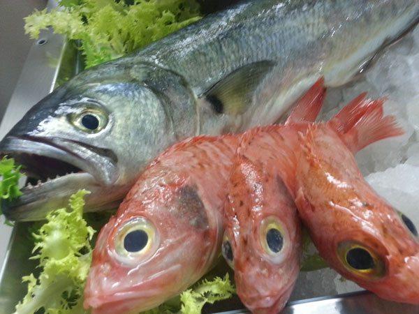 Pesce limone e pesci cipolla