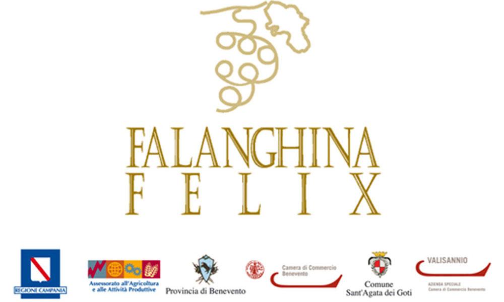 news_foto_1763_falanghina_felixOK