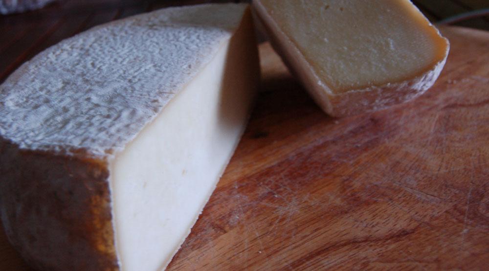 formaggiobanner