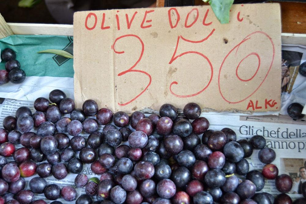 Olivebanner