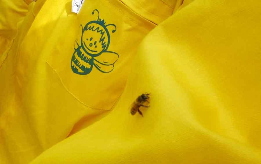 Luca-Bonizzoni---l'ape-pió-docile
