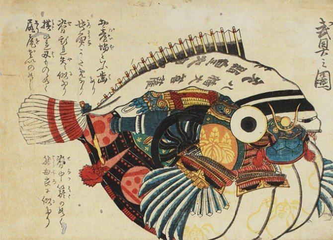 illustrazione pesce palla fugu