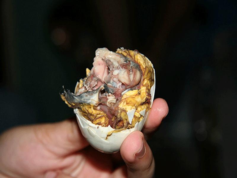 Balut---Feto-d'anatra