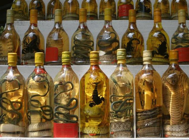 snake-liquor