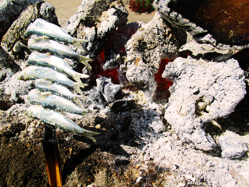 El-Cachalote-sardines-grilling-on-an-espeto