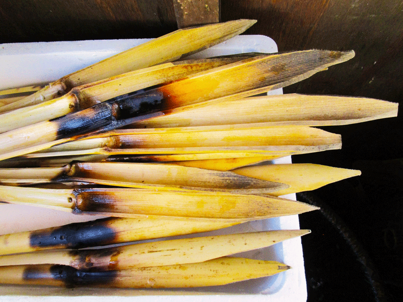 El-Cachalote-the-cane-spears-(espetos)