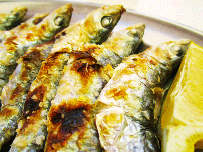 El-Cachalote-the-finished-sardines