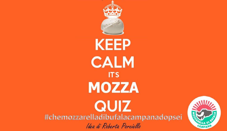 mozzaquiz mozzarella
