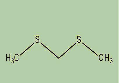 catastrofe-olfattiva-formula-chimica-bismetiltiometano