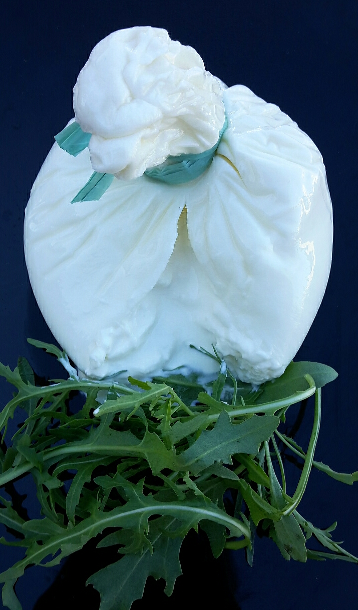burrata gourmandia