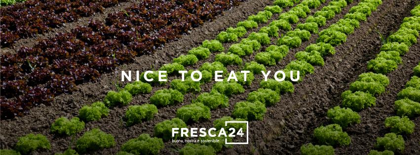 Fresca24