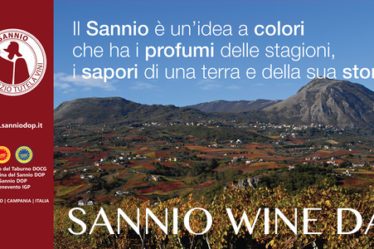 Sannio Wine Day