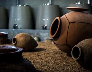La terracotta e il vino