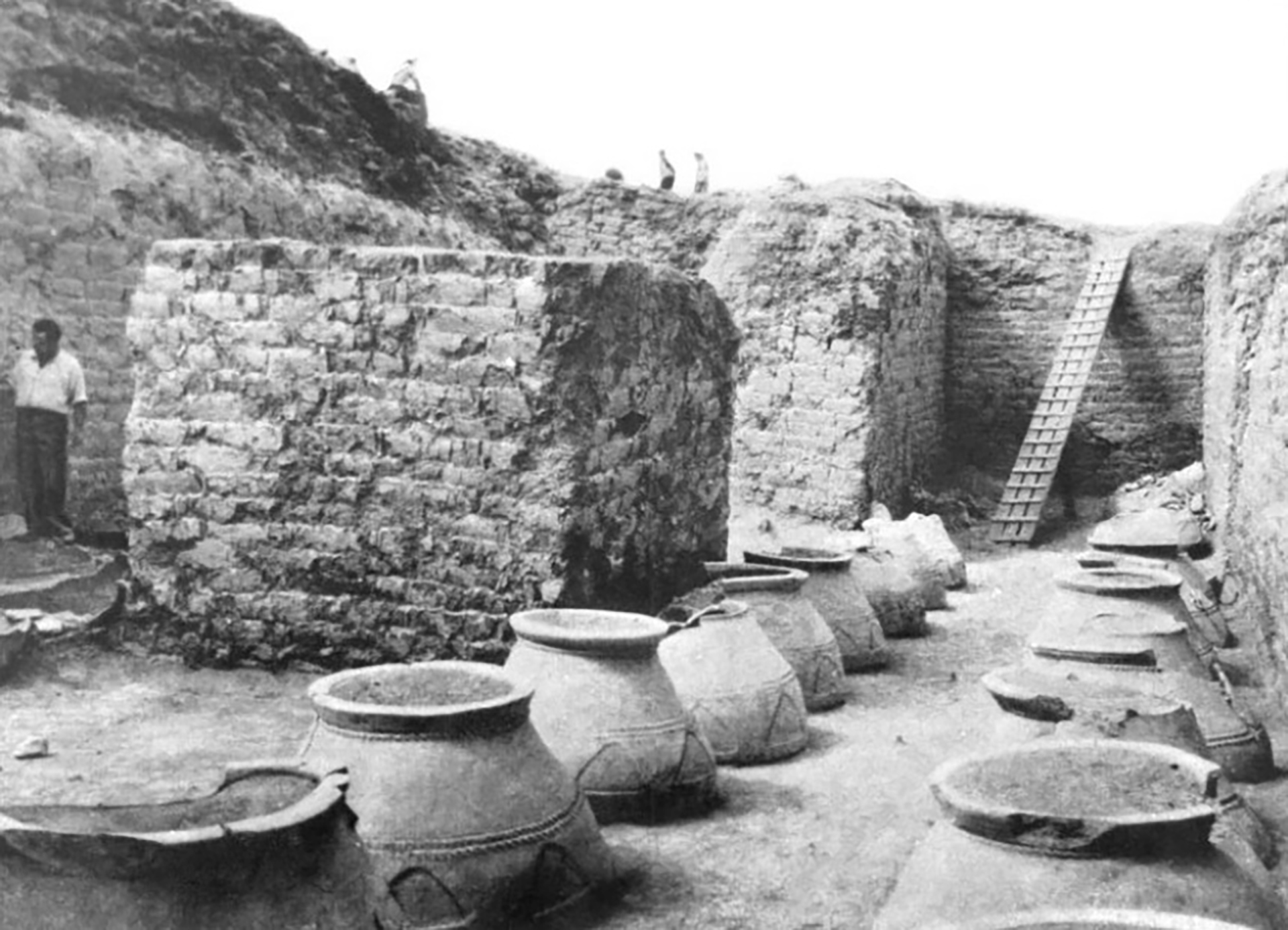 Antichi karasi nelle fortezze armene